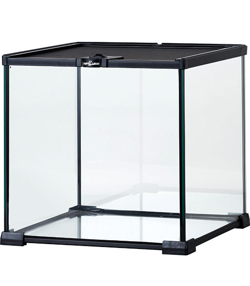 AK10B Mini glass reptile habitat